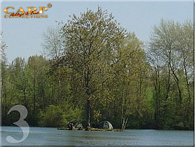 Horse lake: Stek 3, 1 visser